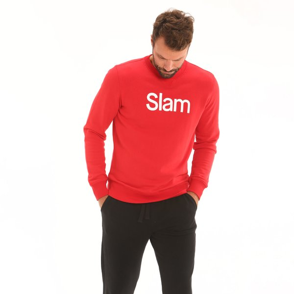 D167 men's sweatshirt in 100% French terry cloth cotton