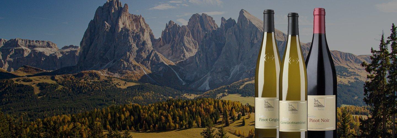May's Virtual Wine Tasting