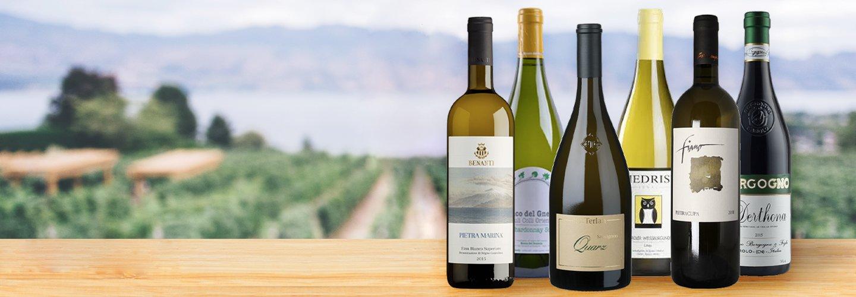 Premium Wines on Exclusive New Mixed Cases