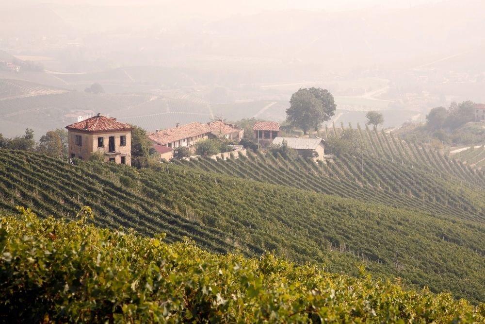 The Soul of Piemontese Wine