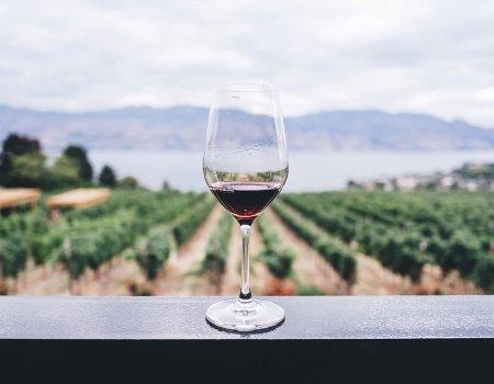 Libiamo Wines