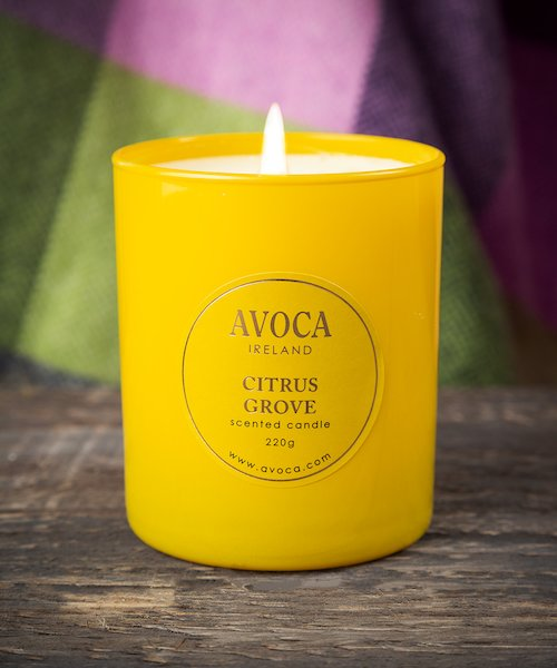 Citrus Grove Scented Candle