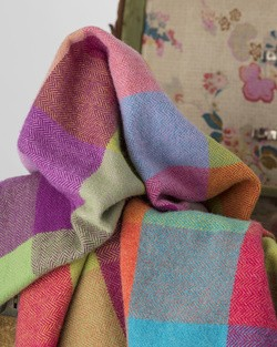 Circus Lambswool Throw