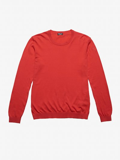 BLAUER CREW NECK SWEATER
