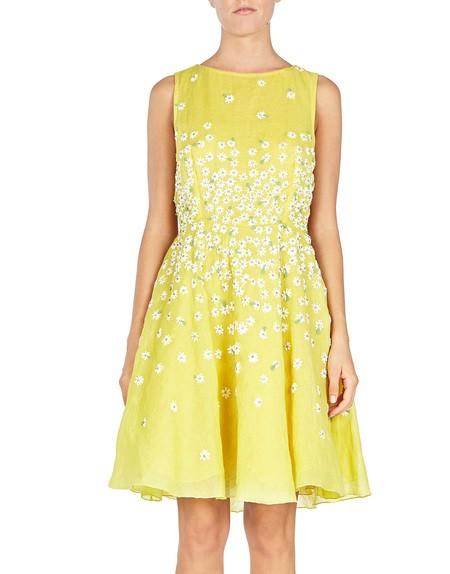 Sequin Embroidery Mini Dress