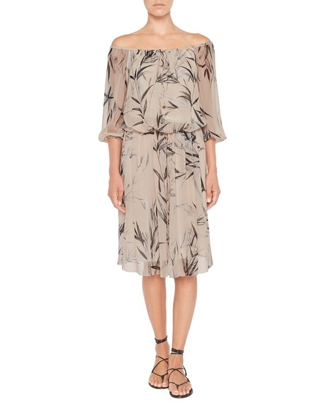 Silk Chiffon Bamboo Print Dress