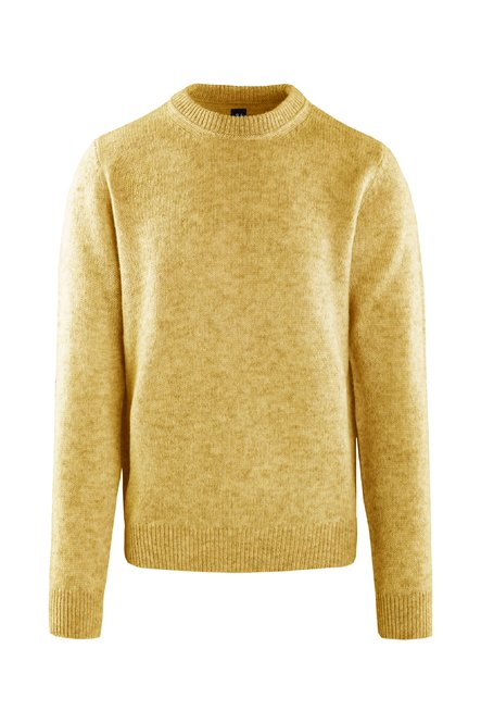 Sweater wool tricot
