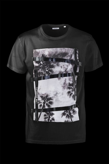 Cotton T-shirt Palms
