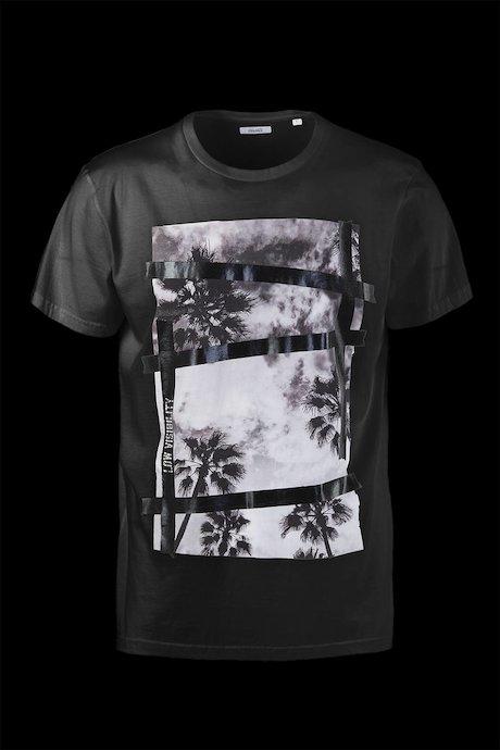 T-shirt Cotone Palms