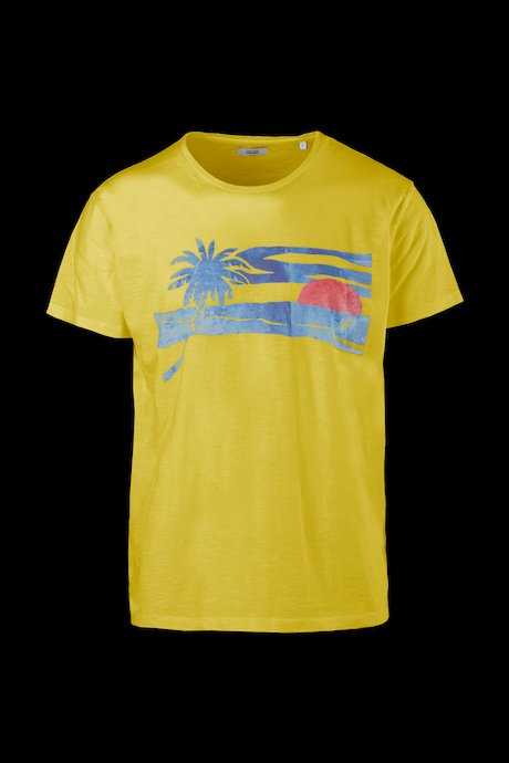 T-shirt palm and sun