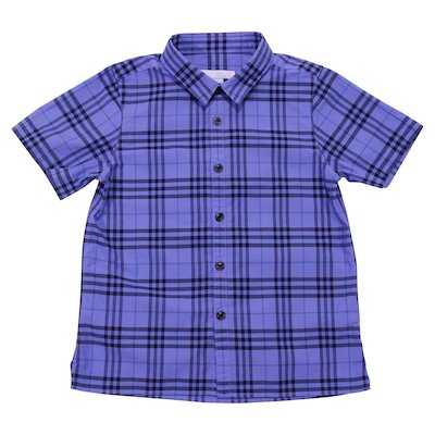Blue check cotton poplin shirt