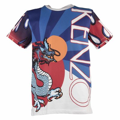 Color blocking cotton jersey Dragon t-shirt