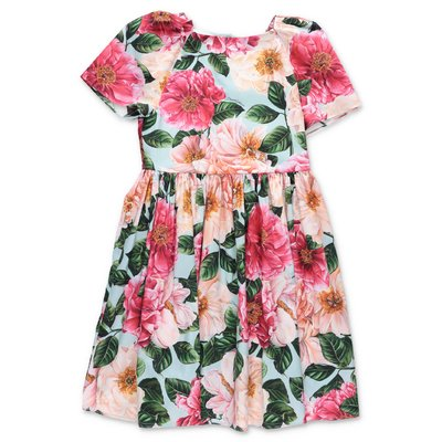 Dolce & Gabbana Power Pastel camellia print cotton poplin dress