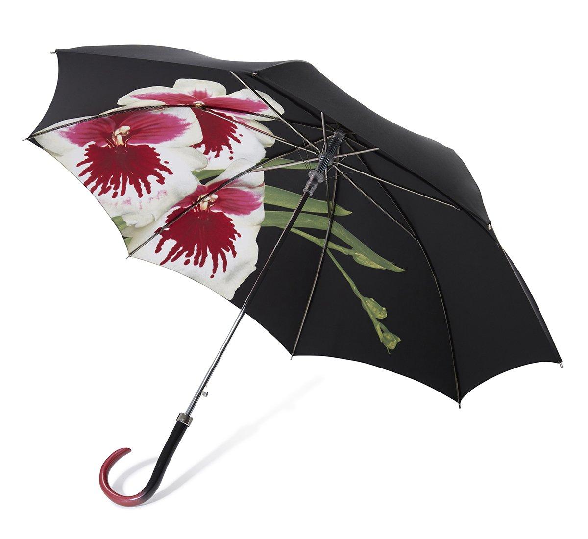 Ombrello orchidea