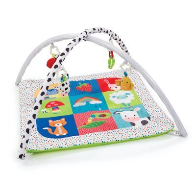 Early Learning Centre Blossom Farm Playmat and Arch