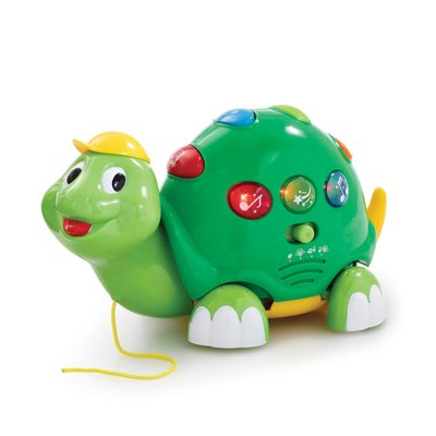 Little Lot Pull Along Musical Tortoise