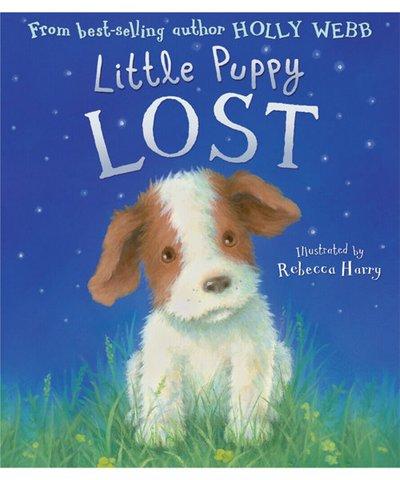 little puppy lost