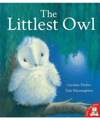 the littlest owl
