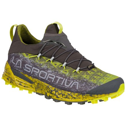 Mountain & Trail Running Shoes for men (GTX options) - MALE - Tempesta Gtx - Image