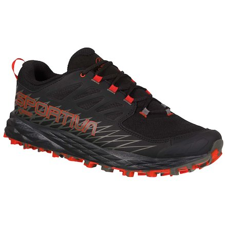 Mountain & Trail Running Shoes for men (GTX options) - MALE - Lycan Gtx - Image