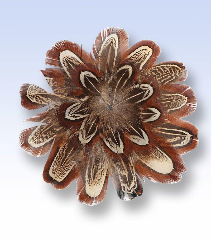 Broche plumas