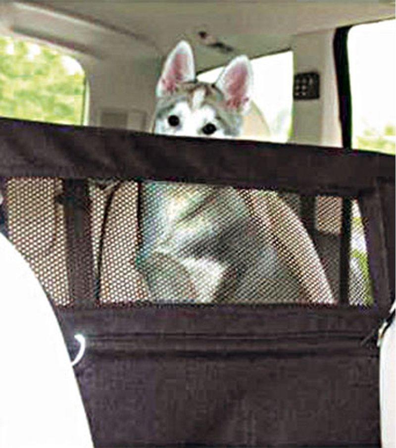 Barrera protectora separadora para el interior del coche