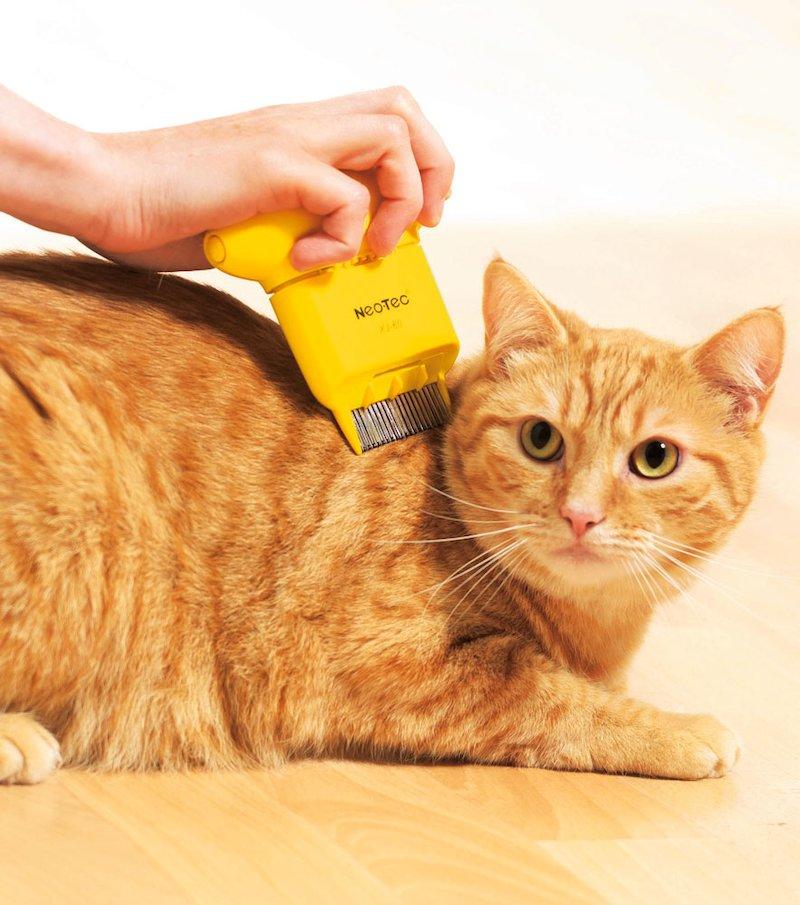 Peine antipulgas mascotas