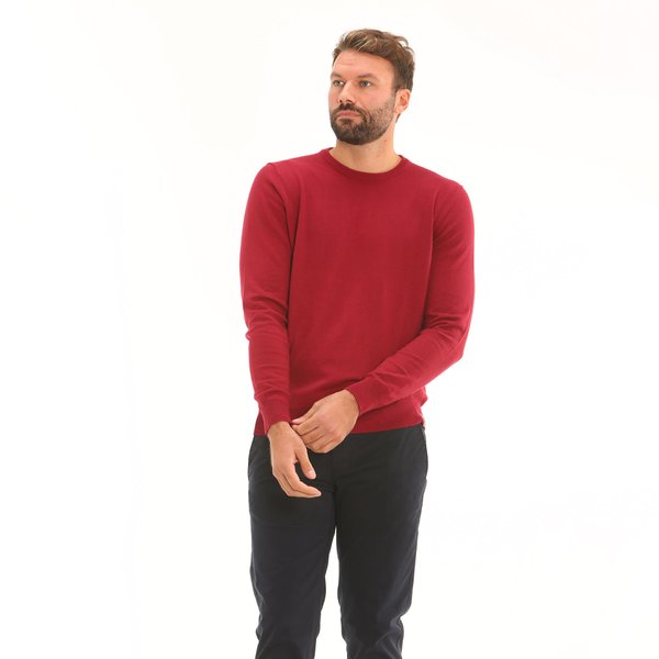 Men jumper F70 in cotton blend